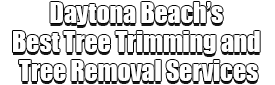 Daytona Beach's Best Tree Trimming and Tree Removal Services Logo-We Offer Tree Trimming Services, Tree Removal, Tree Pruning, Tree Cutting, Residential and Commercial Tree Trimming Services, Storm Damage, Emergency Tree Removal, Land Clearing, Tree Companies, Tree Care Service, Stump Grinding, and we're the Best Tree Trimming Company Near You Guaranteed!