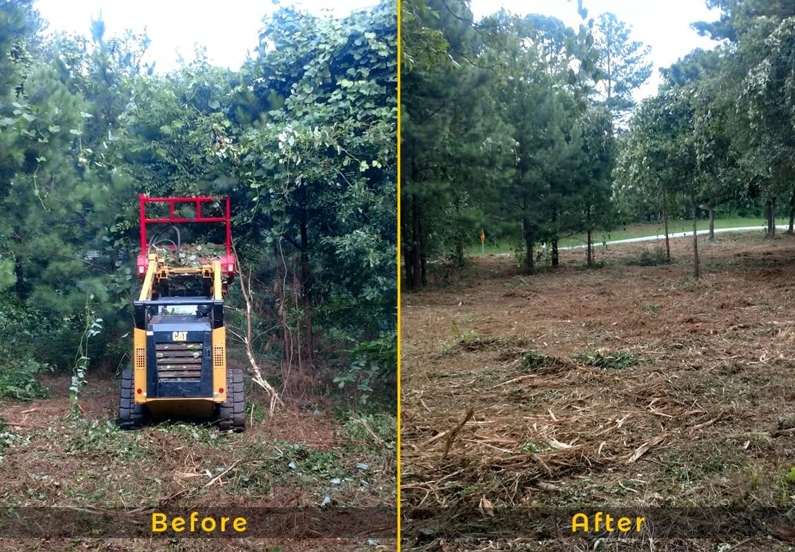 Land Clearing-Daytona Beach's Best Tree Trimming and Tree Removal Services-We Offer Tree Trimming Services, Tree Removal, Tree Pruning, Tree Cutting, Residential and Commercial Tree Trimming Services, Storm Damage, Emergency Tree Removal, Land Clearing, Tree Companies, Tree Care Service, Stump Grinding, and we're the Best Tree Trimming Company Near You Guaranteed!