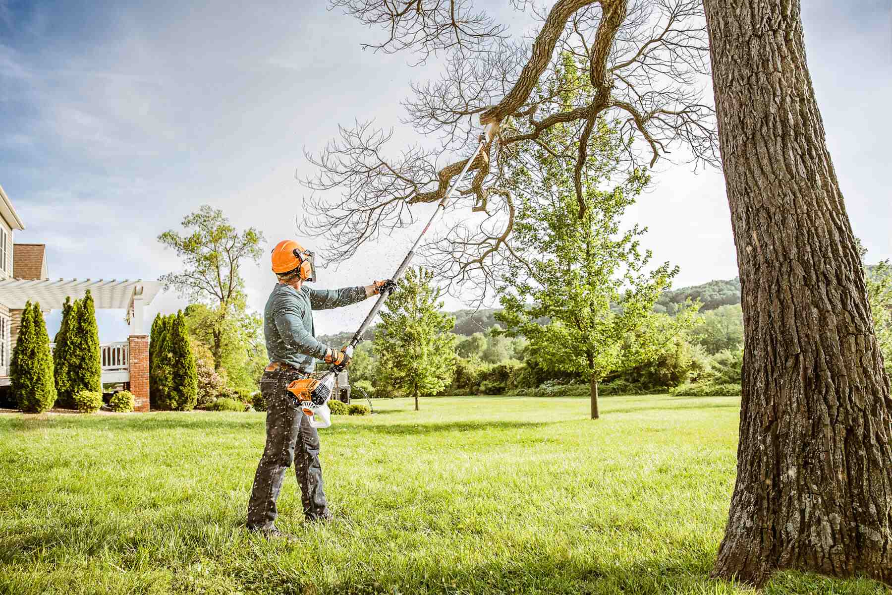 Tree Pruning-Daytona Beach's Best Tree Trimming and Tree Removal Services-We Offer Tree Trimming Services, Tree Removal, Tree Pruning, Tree Cutting, Residential and Commercial Tree Trimming Services, Storm Damage, Emergency Tree Removal, Land Clearing, Tree Companies, Tree Care Service, Stump Grinding, and we're the Best Tree Trimming Company Near You Guaranteed!